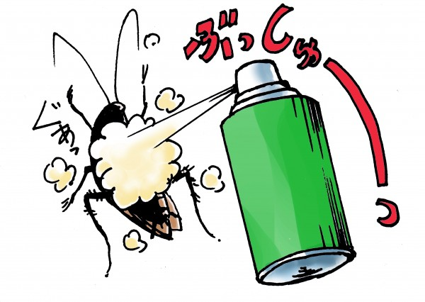 Những cách tiêu diệt gián ở Nhật
